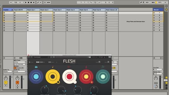 Flesh - Multi Out in Ableton Live