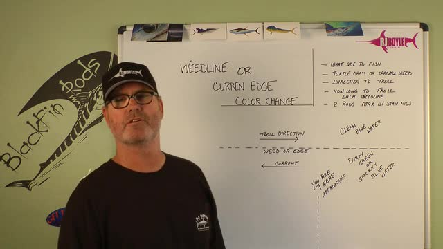 Dolphin Fishing - Weed Lines and Current Edges