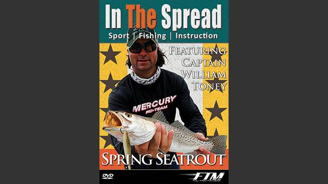 Spring Sea Trout Fishing In The Spread