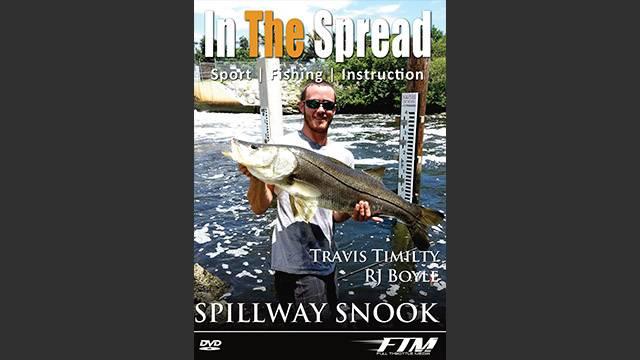 Spillway Snook Fishing in Florida