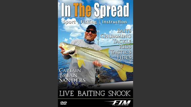 Live Baiting Snook
