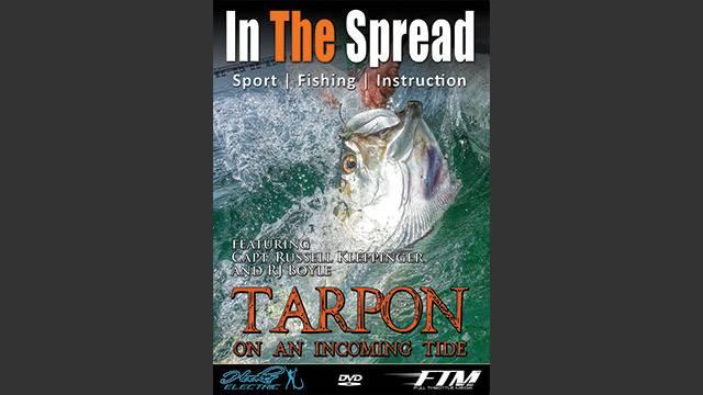 Tarpon Fishing on Incoming Tides