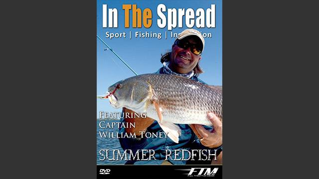 Homosassa Summer Redfish