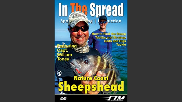 Sheepshead Fishing Tactics