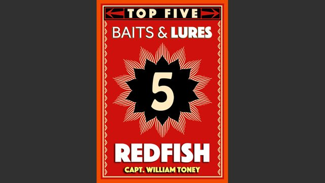 Top 5 Redfish Baits and Lures