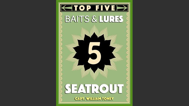 Top 5 Sea Trout Baits and Lures