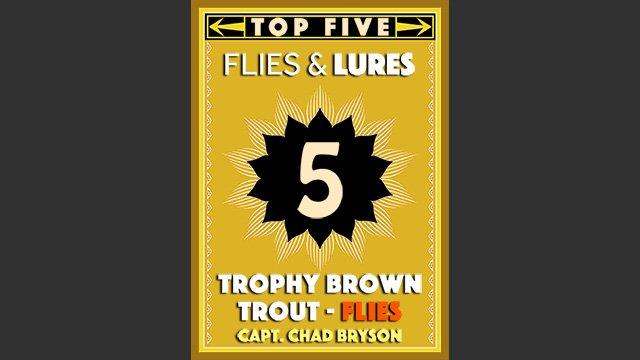 Top 5 Trophy Brown Trout Flies