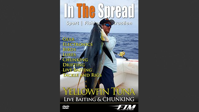 Yellowfin Tuna Fishing Chunking Drifting & Live Baiting