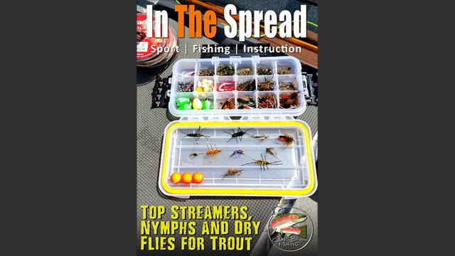 Top Streamers, Nymphs and Dry Flies for Trout