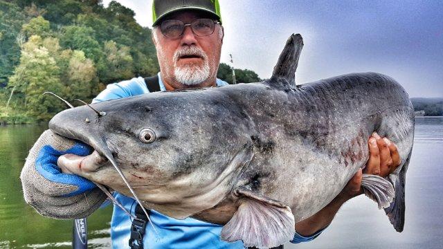 Drag Drift Anchor Fishing for Catfish