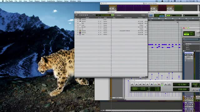 How To Use Cinch With Pro Tools