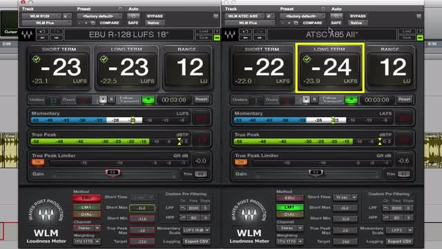 How To Use Waves WLM Plus In An Audio Post Production Workflow