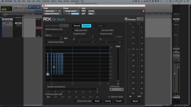 iZotope RX Plugin Pack - Dehum Plugin
