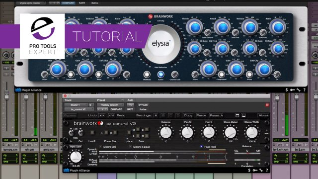 Using The Elysia Alpha Compressor In M/S Mode To Widen You Mix- Free Expert Tutorial