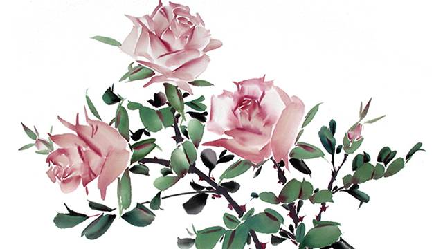 rose from chinese flower painting  lesson   ning yeh, Natural flower