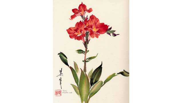 Canna from 108 Flowers Book 1: Lesson 8017