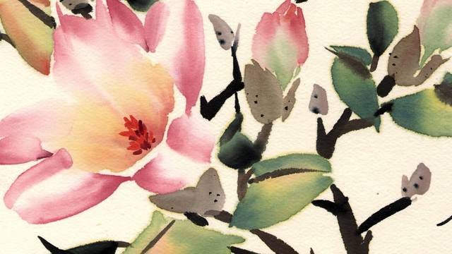 Chinese Magnolia from 108 Flowers Book 1: Lesson 8022