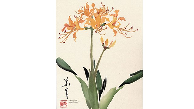 Dragon Head (Golden Spider Lily) from 108 Flowers Book 2: Lesson 8037