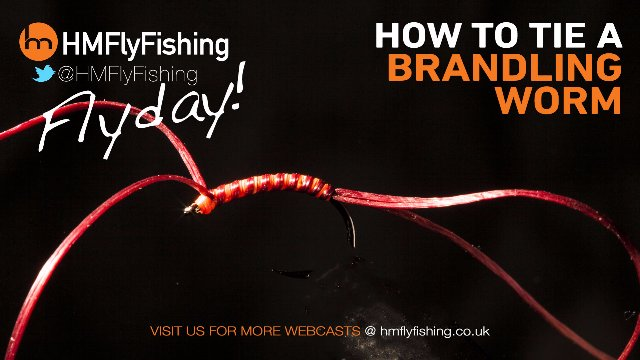 Tying a Brandling Worm fly pattern