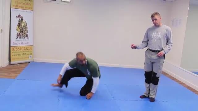 Systema Combat Drill 7: Kick Drill