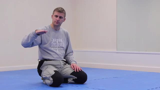 Systema Health Drill 11: The Four Pillars of Human Movement - The Push Up