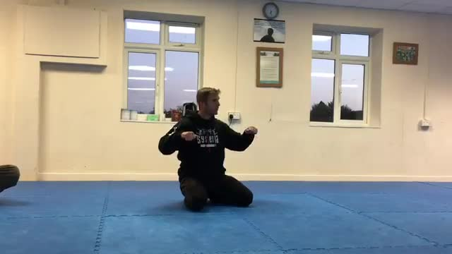 Assisted Pillars: 1. The Push Up