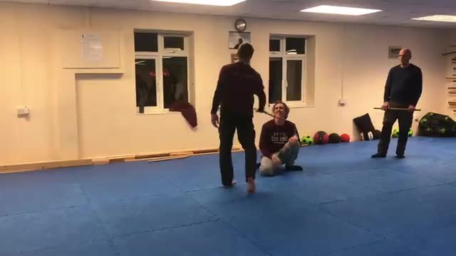 Systema short stick work