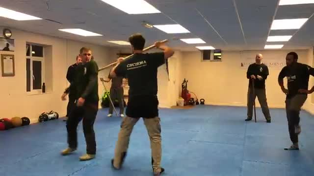 Systema Stick Work - Strikes