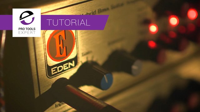 Tutorial - Universal Audio Eden WT8000 Bass Amp