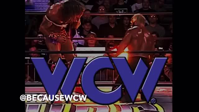 Because WCW- 012 Spring Stampede