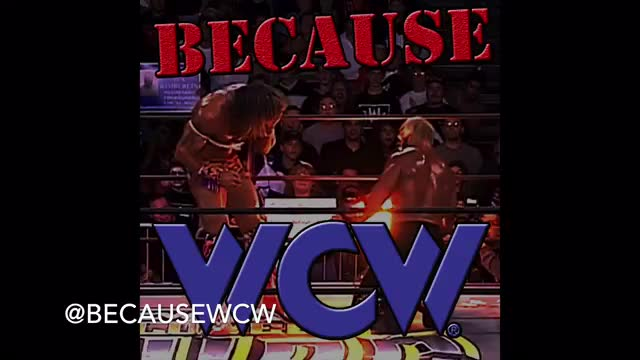 Because WCW - 013 Halloween Havoc 1996