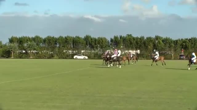 Limited_Edition_12_Goal_Travieso_vs_Beverly_Equine_011417