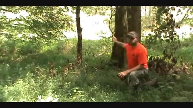 Early Season Doe Hunt & Scouting Tips