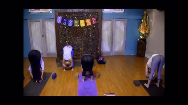 Gentle Flow with Molly Masaoka: Stabilize