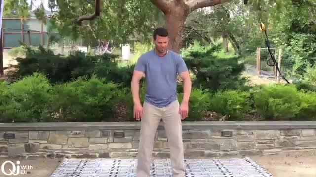 Qi Breaks - Heart and Earth Flow