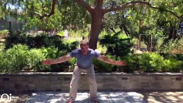 Qi Breaks - Flying Pigeon