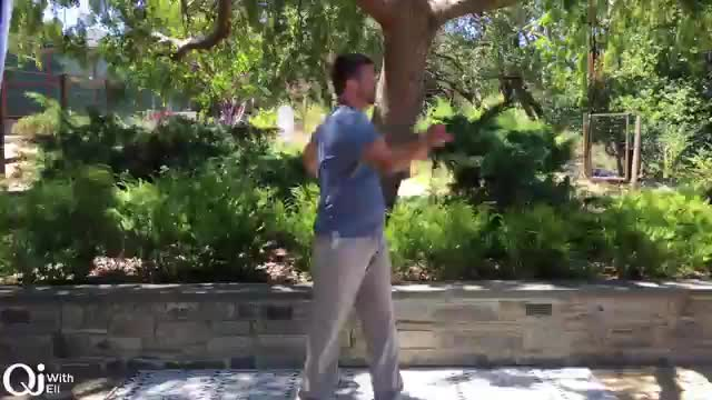 Qi Breaks - Summer Emotional Balancing Practice
