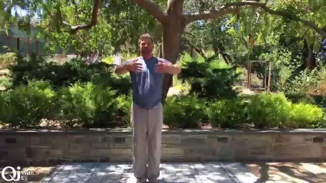 Qi Breaks - Kidney   Heart Energizing Practice