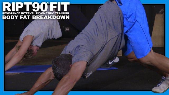 RIPT90 FIT Body Fat Breakdown