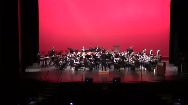Daleville High Band Performance at 2014 AMEA in Montgomery, Al