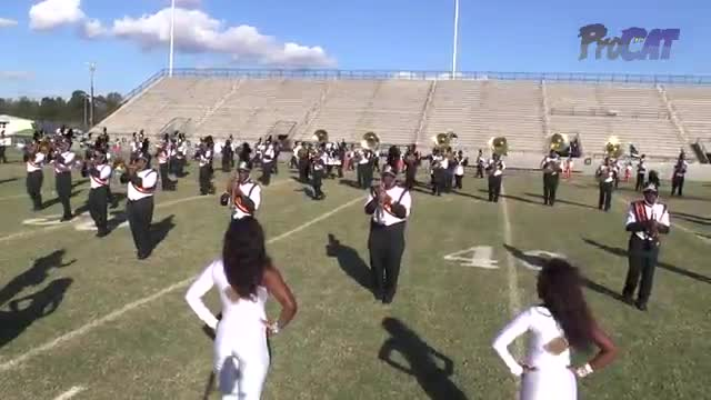 Albany High Band at 2015 Southern Showcase MBF in Dothan, Alabama